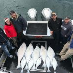 halibut fishing homer alaska