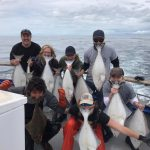 halibut-fishing-homer-alaska